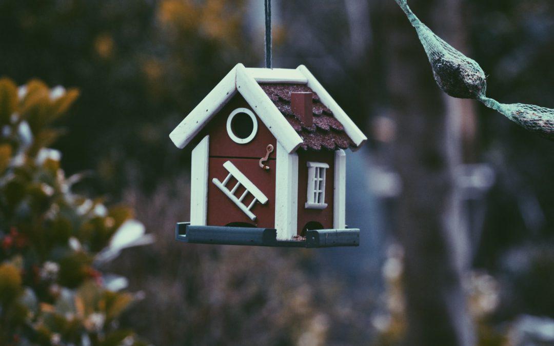 Jak zmienić zarządcę nieruchomości